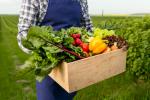 Vendeur / vendeuse fruits et légumes (H/F)